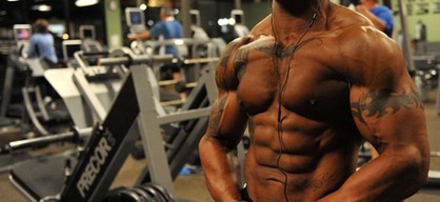 פוטנציאל ההשתכרות הגבוה של מפתחי הגוף