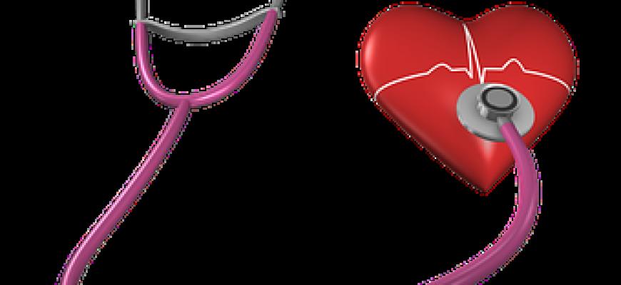 לוחמי סומו – השמנה ומחלות לב