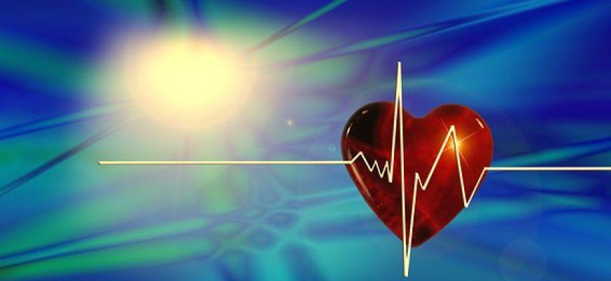 לוחמי סומו, השמנה ומחלות לב