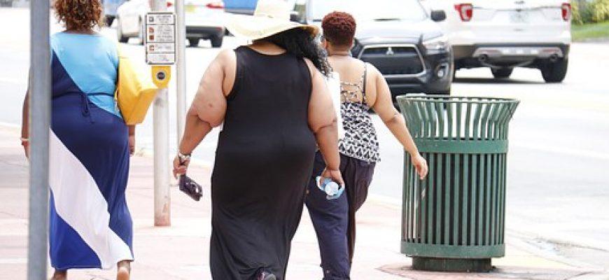 אימוני איכות שונים והשפעתם על הרכב הגוף ומשקלו בקרב אנשים כבדי משקל
